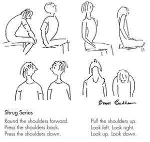 Shrug Series Exercises