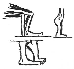 Bonnie prudden drawing - heel raises chair exercise