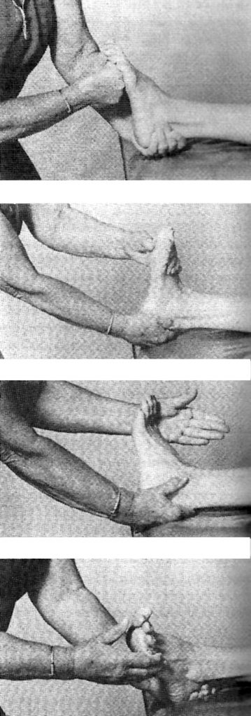 Exercises for the Ankle